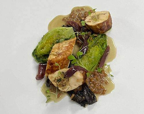 Landais chicken ballotine, Spelt, Gem lettuce, Truffle & Hay Sauce